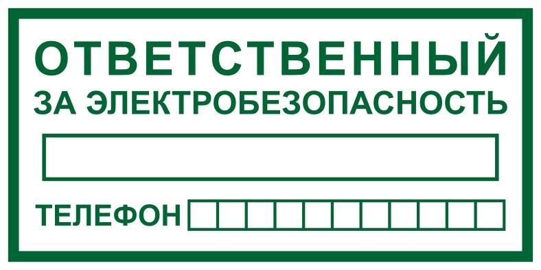 Ответственный за электробезопасность в электробезопасность мостового крана